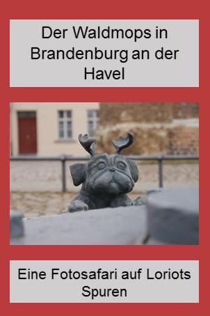 Der Waldmops in Brandenburg - eine Fotosafari auf Loriots Spuren
