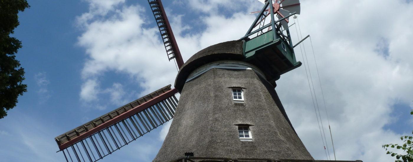 die Windmühle Johanna in Hamburg-Wilhelmsburg